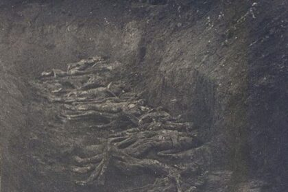 Фотография расстрелянных немцами советских граждан, обнаруженных в районе города Сокаль Львовской области после его освобождения.